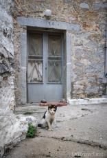 Greece kittyMesta_07