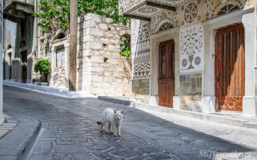Greece kittyPyrgi_04