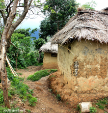 thatched hut, rwenzoris